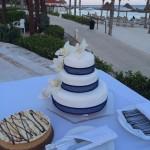 Tarese and Carl's Wedding